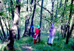 i bambini nel bosco durante le fattorie didattiche
