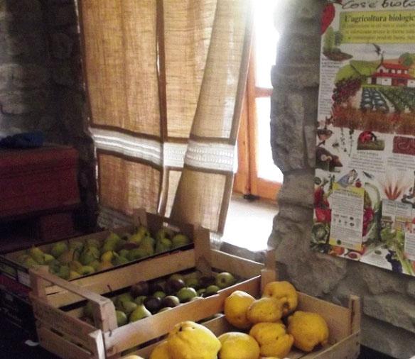mele e pere da agricoltura biologica